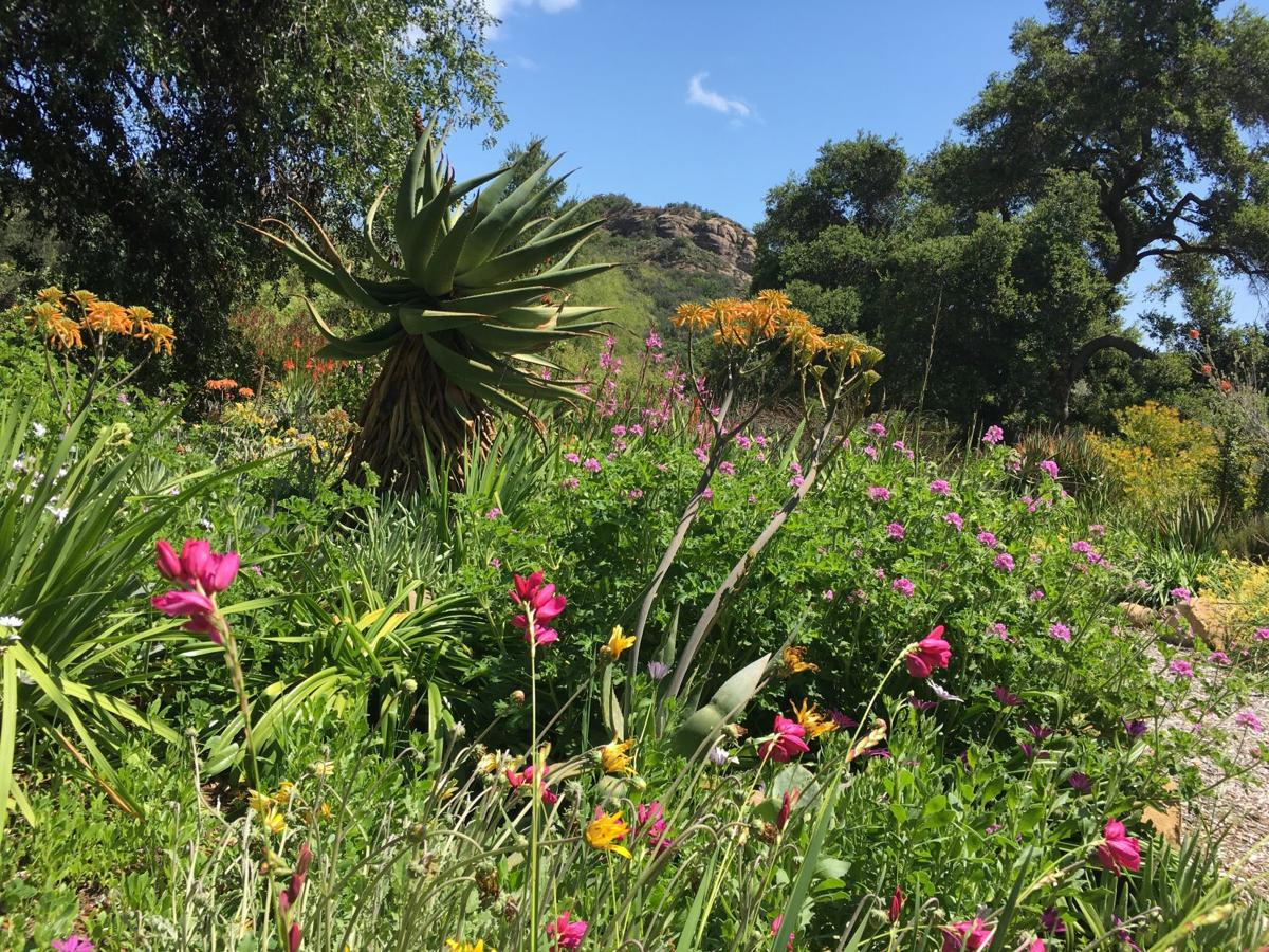 Taft Garden