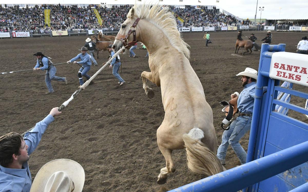 053019 Rodeo Thursday 01.jpg
