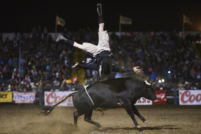 Matt Cohen's snortin' bull showcases Santa Maria Elks Rodeo