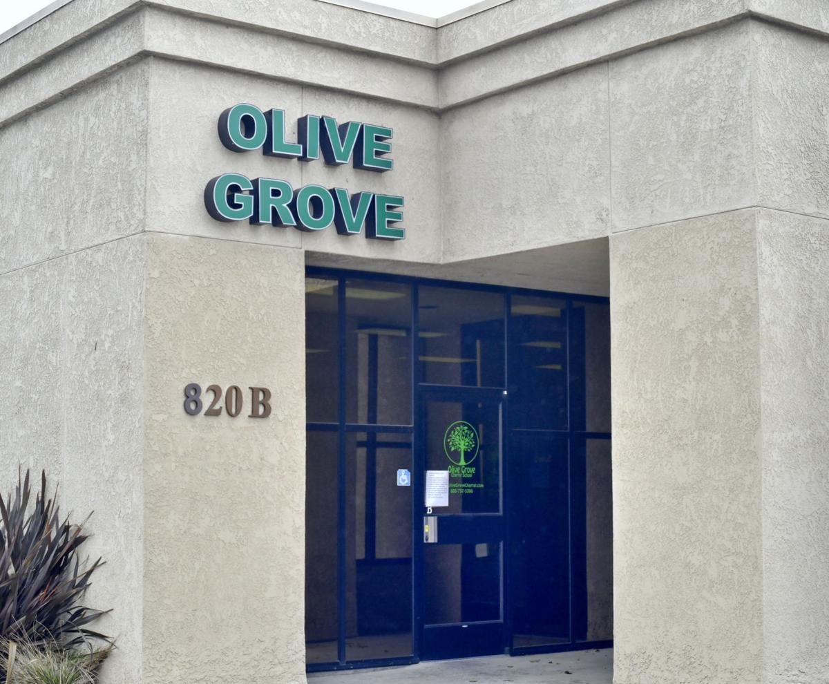 040717 Olive Grove 02.jpg