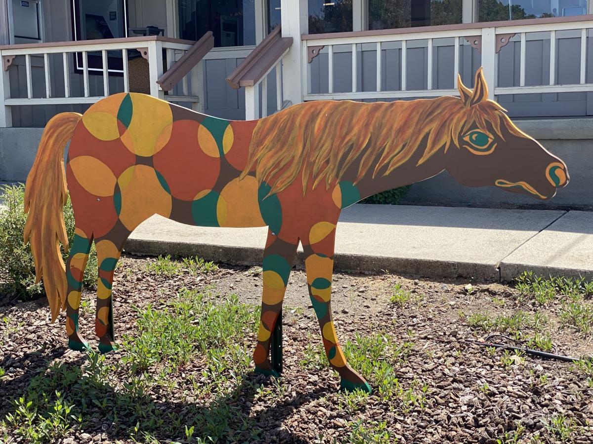 Santa Ynez Painted Horse Project 3