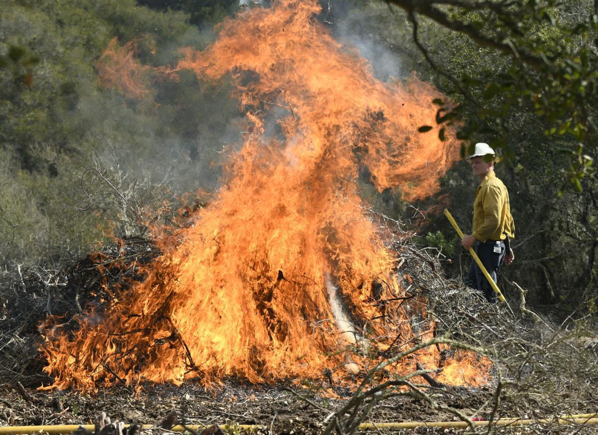 022619 Burton Mesa burn piles 01.jpg