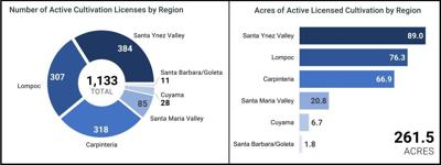 Santa Barbara County state licenses, cultivation by region
