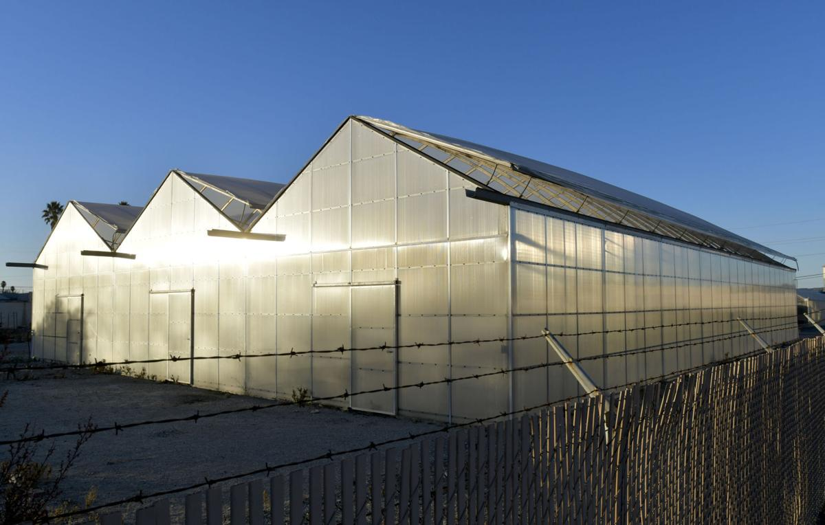 122117 Cannabis greenhouses 01.jpg
