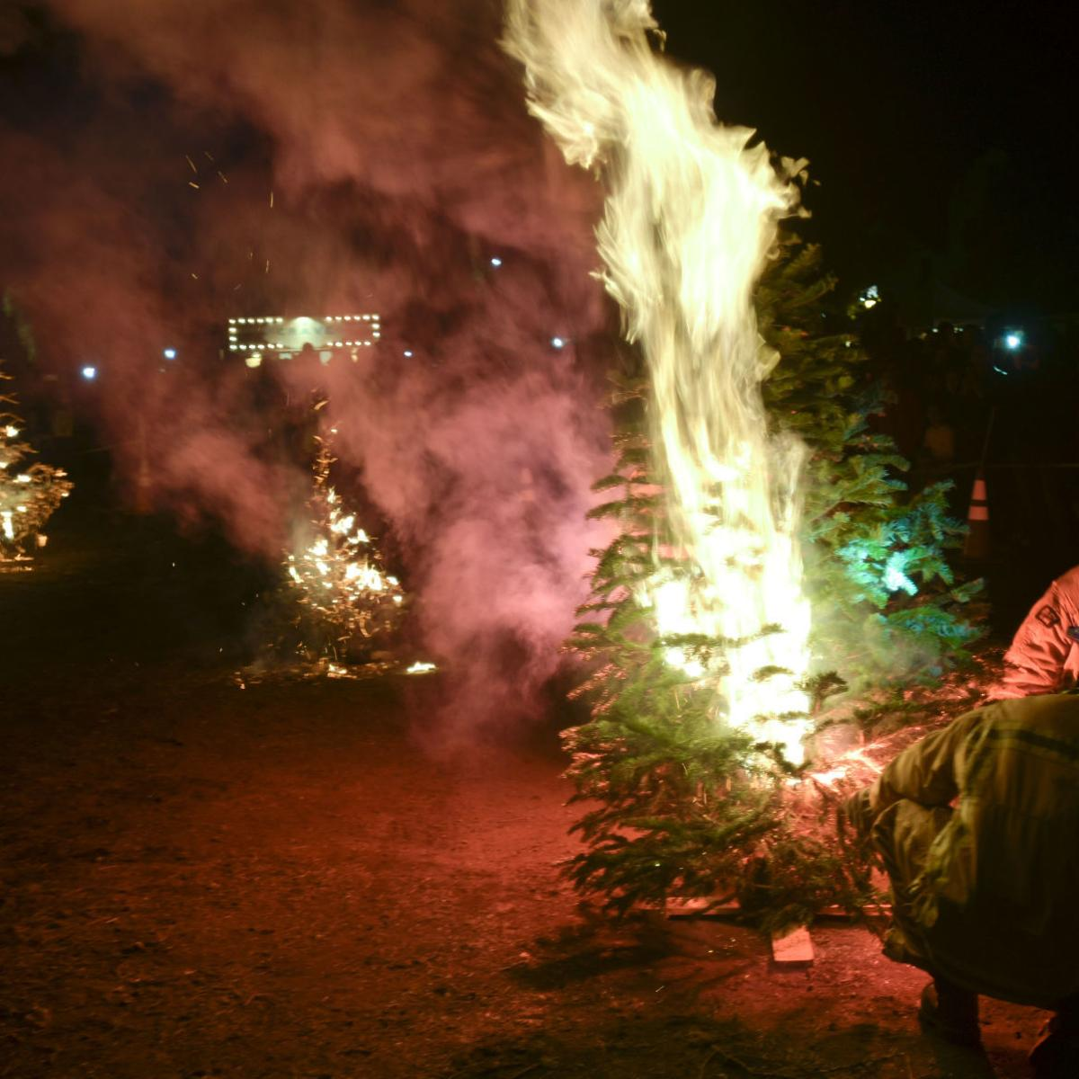 Solvang Ca Christmas.Solvang Christmas Tree Burn Friday Night A Festive Event