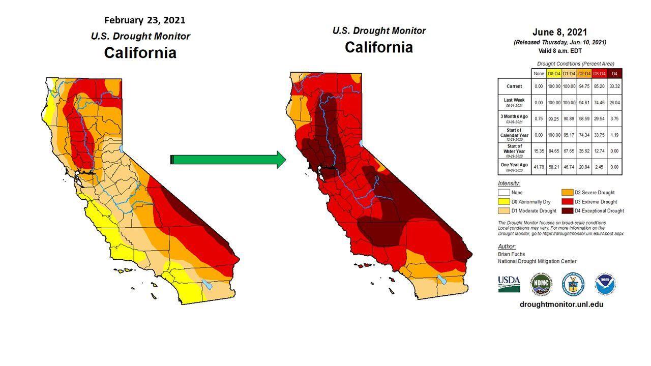 Drought Feb through Jun, 2021.jpg
