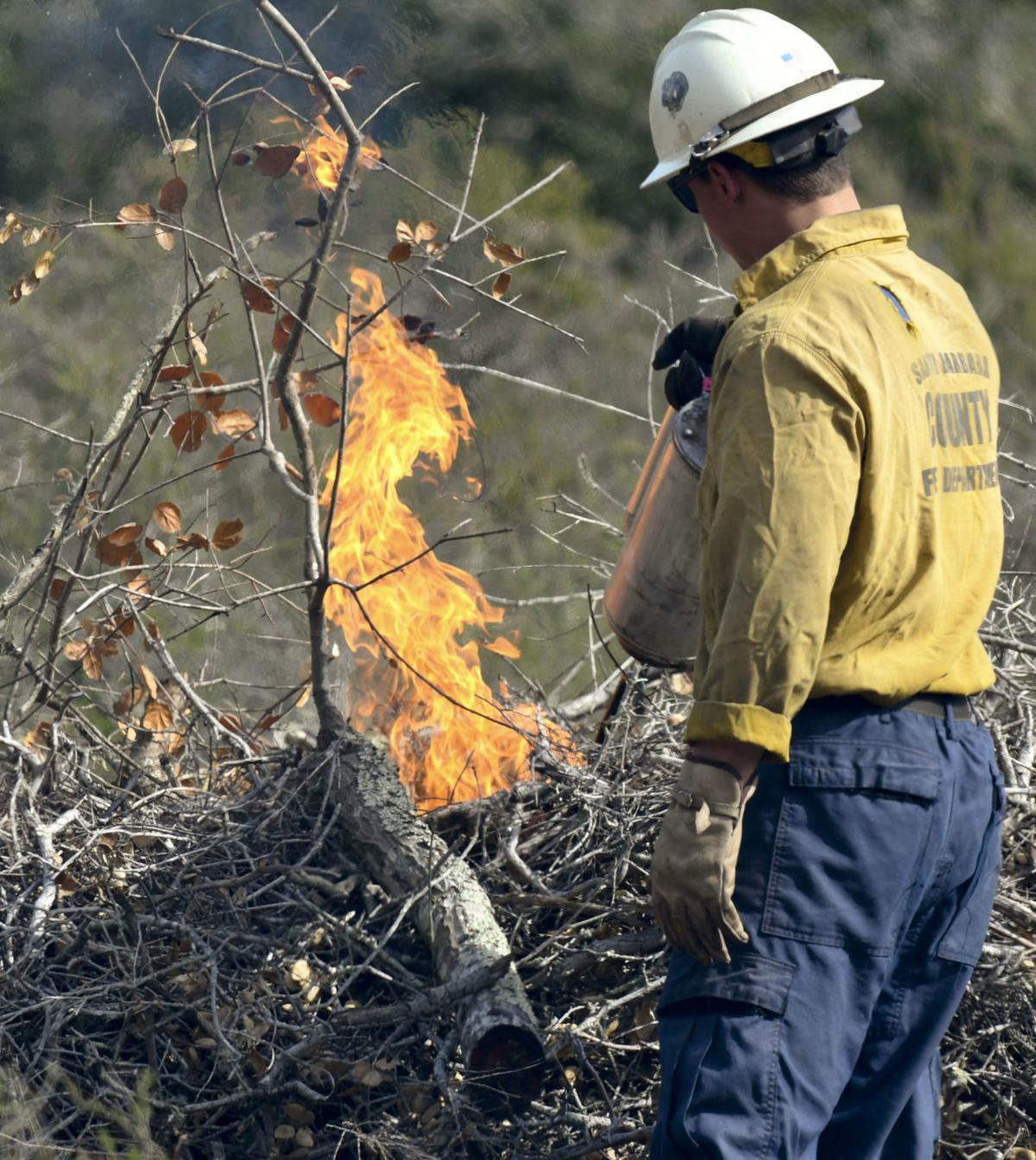 022619 Burton Mesa burn piles 02.jpg