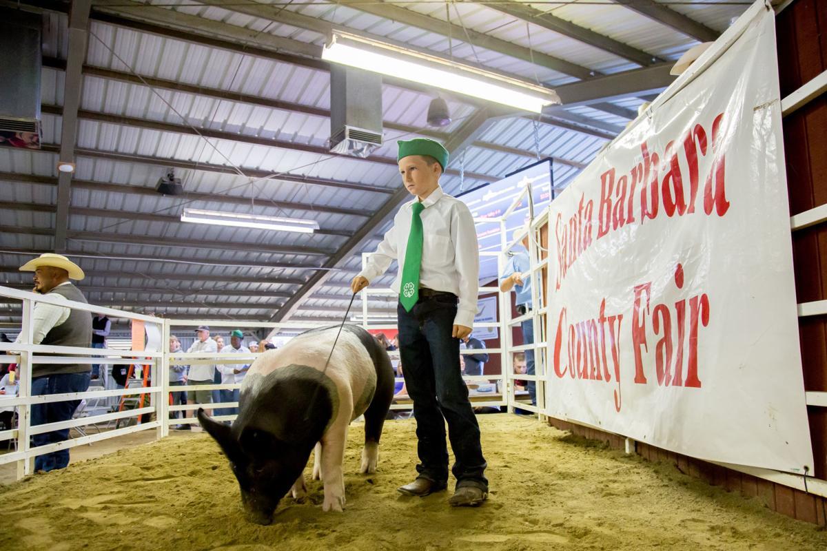 071319 Fair Swine Auction 07.jpg