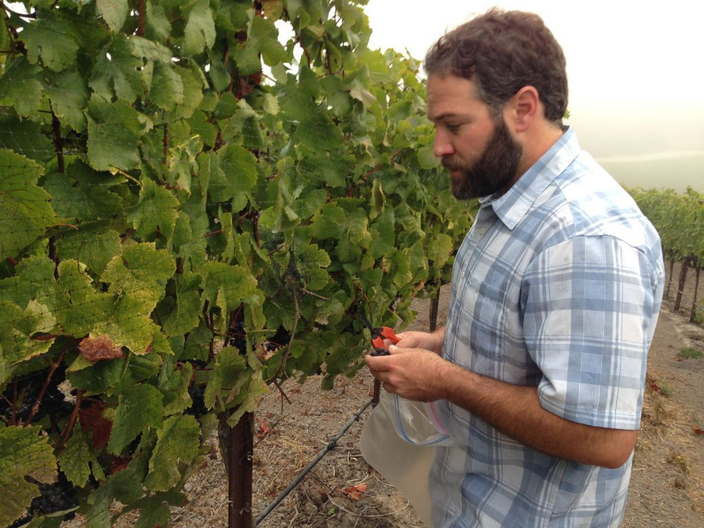 Winemaker Ryan Deovlet