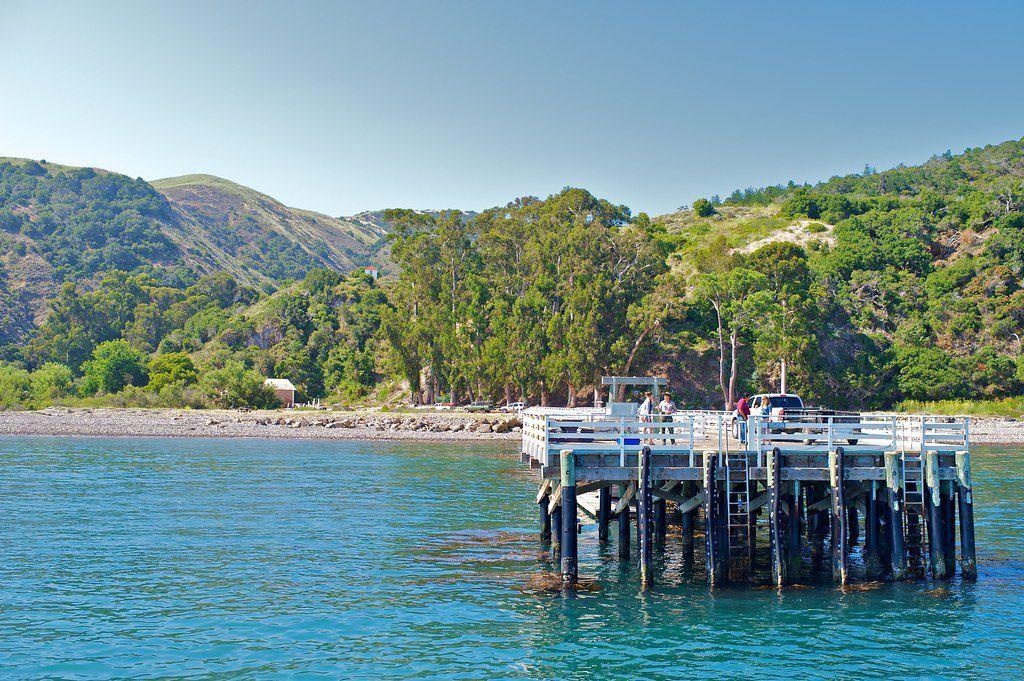 010521 Channel Islands Santa Cruz