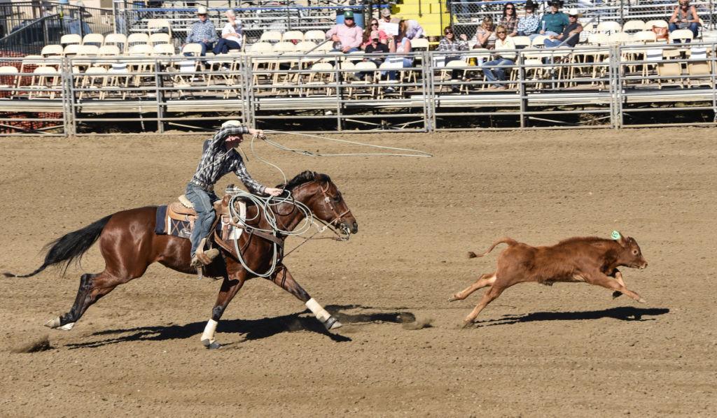 102514 High School Rodeo 20.jpg