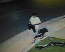 LPD armed robbery