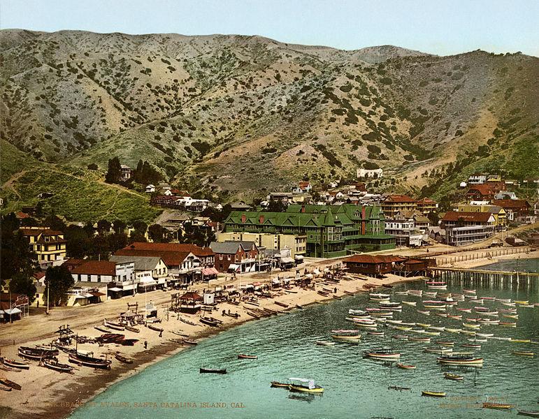 103119 Santa Catalina Island 2