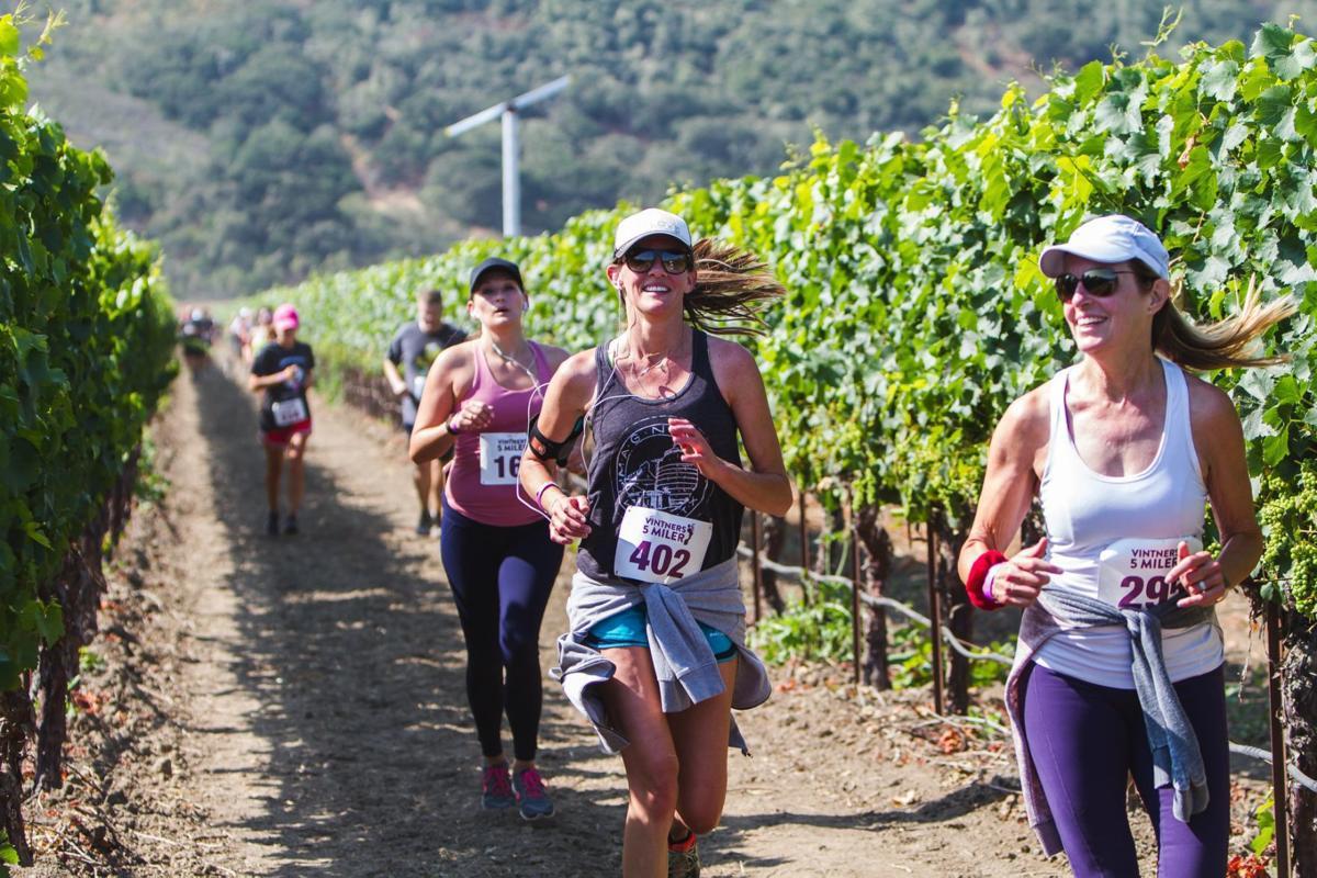 2018 vintners 5 miler