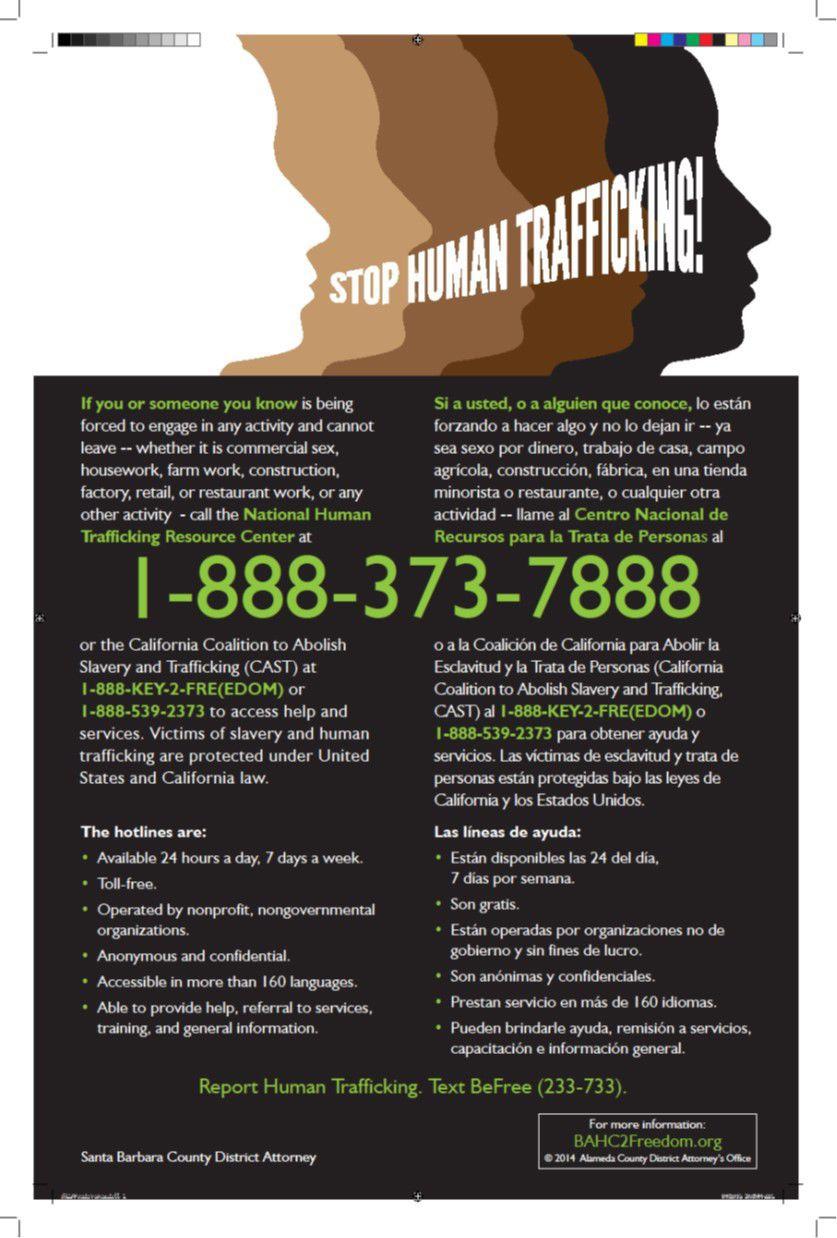 human trafficking hotline number