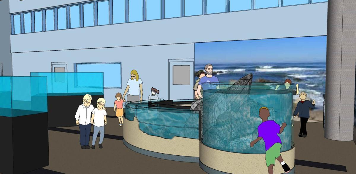 CHS Aquarium design east