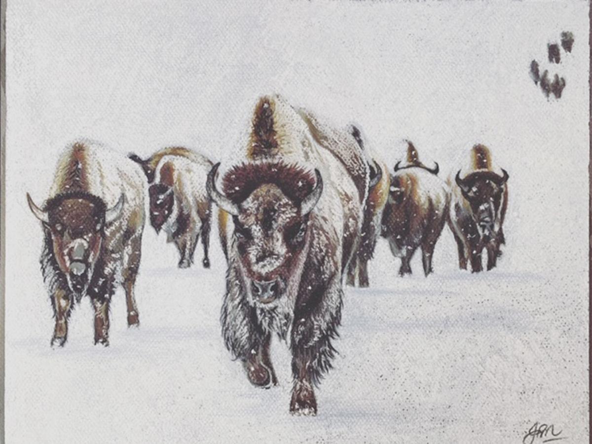 Snow Army. Jamie O'Neill
