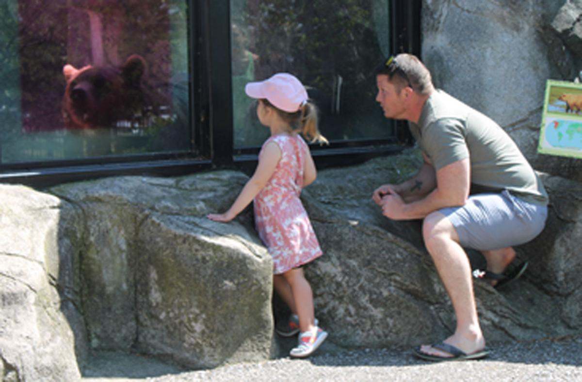 Zoo photo 1