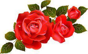obituary-roses