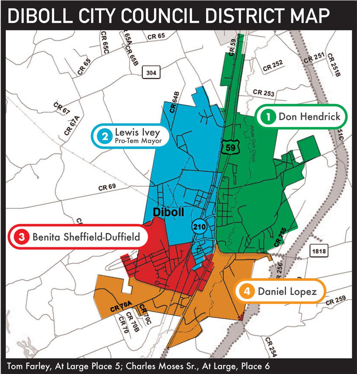 Diboll Voter Turnout Map FINAL