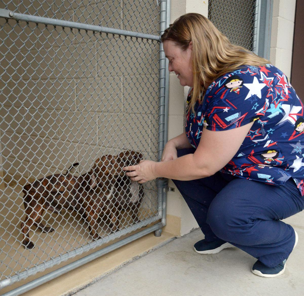 Kurth animal shelter