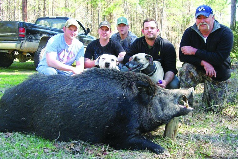 OUTDOORS: Upcoming hog hunting contest offering $28,000 in