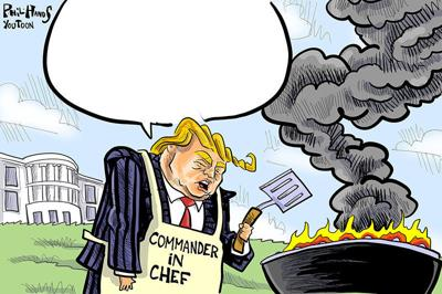 Grilling You Toon