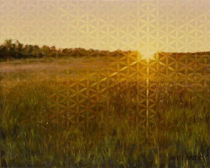 Singularity in the Sun
