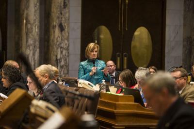 Rep. Terese Berceau not seeking re-election