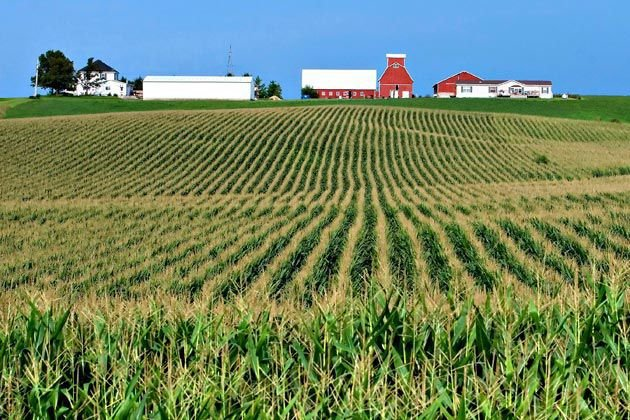 Farmland (copy) (copy)