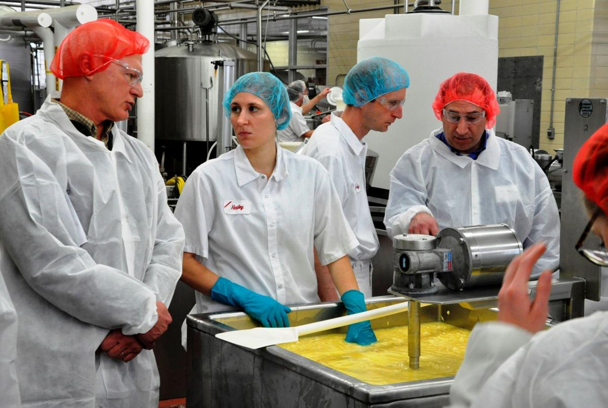 Students make cheese at Center for Dairy Research