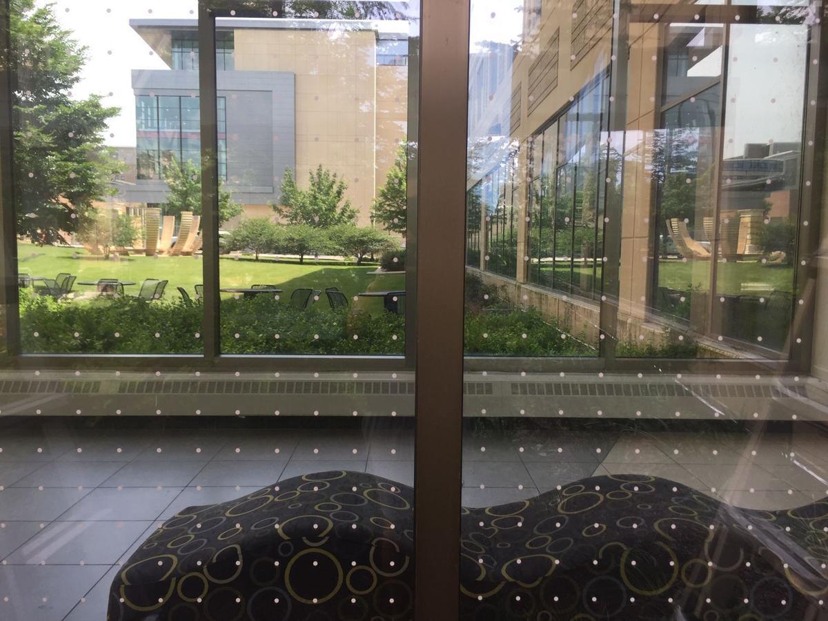 Ogg Hall window treatment