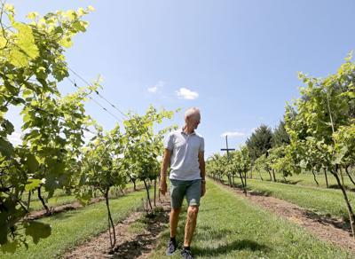 Botham Vineyards & Winery