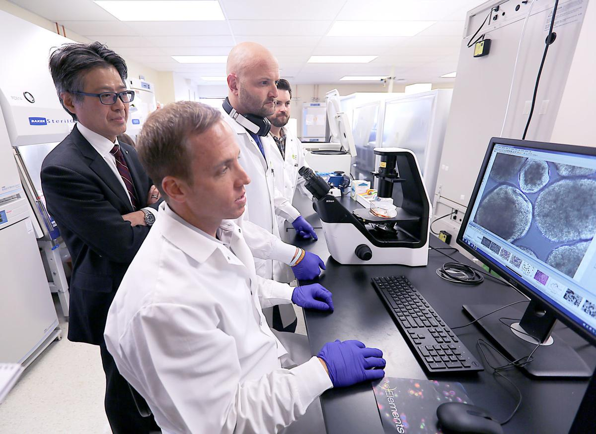 CDI guys with cells on computer screen