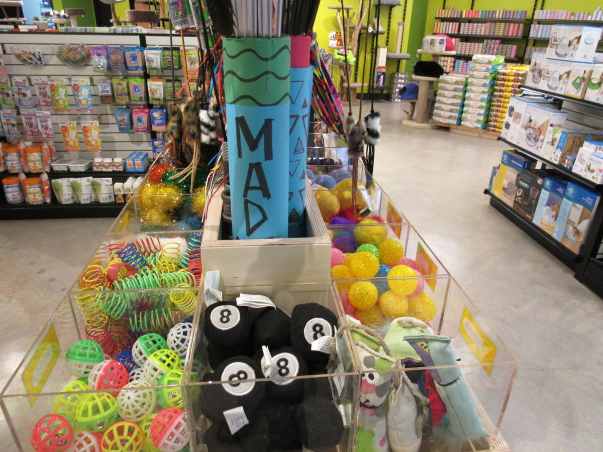East Side pet supply stores find their niche and create