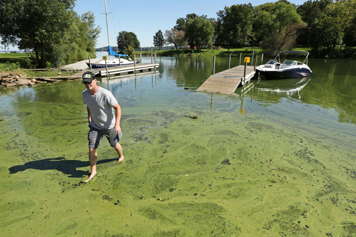 Over-fertilized lakes