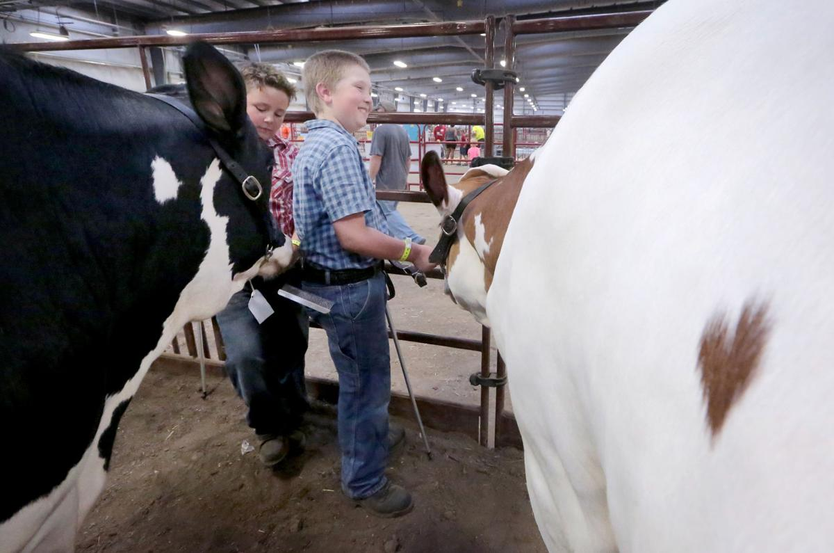 Dane County Fair Opened Tuesday Night >> Photos Opening Day Of The Dane County Fair Local News Madison Com