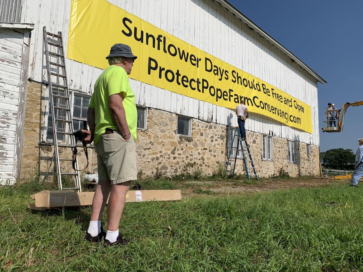 Sunflower Days banner