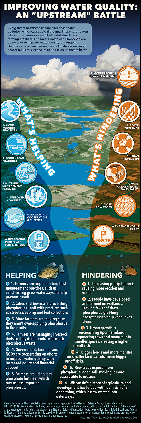 Improving water quality -- what works and what hurts
