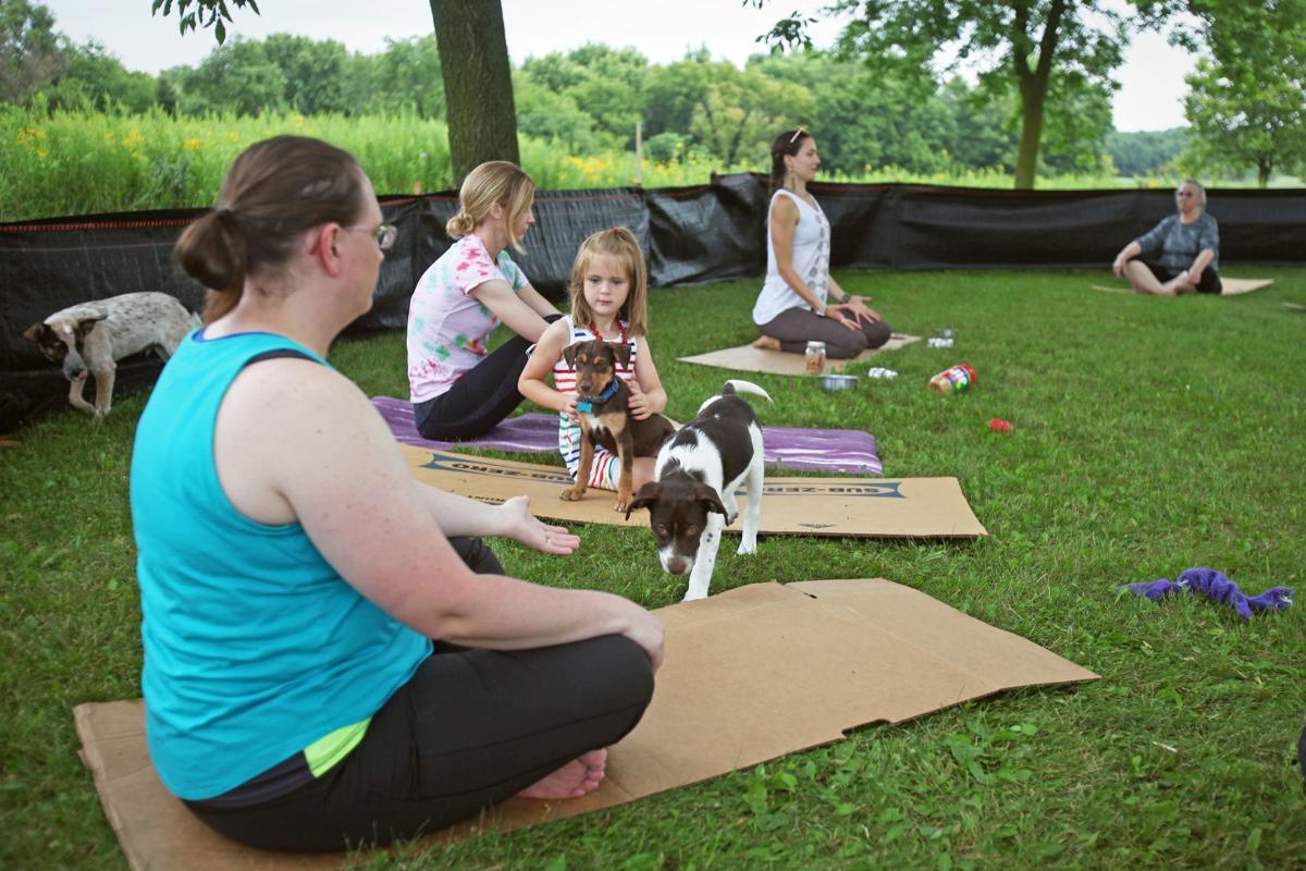 Puppy yoga 1