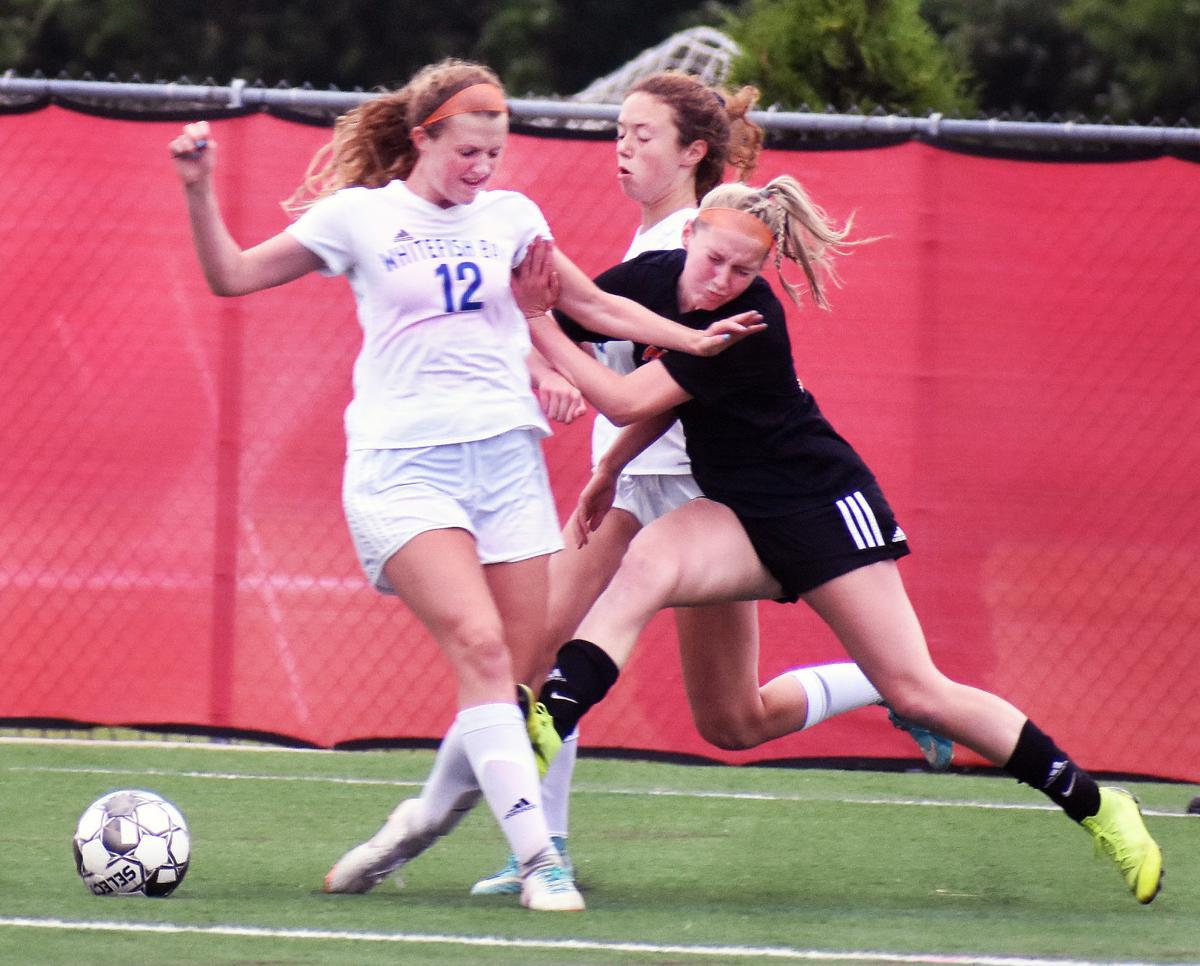 WIAA girls soccer photo: Oregon's Ashley Hanson takes a hit