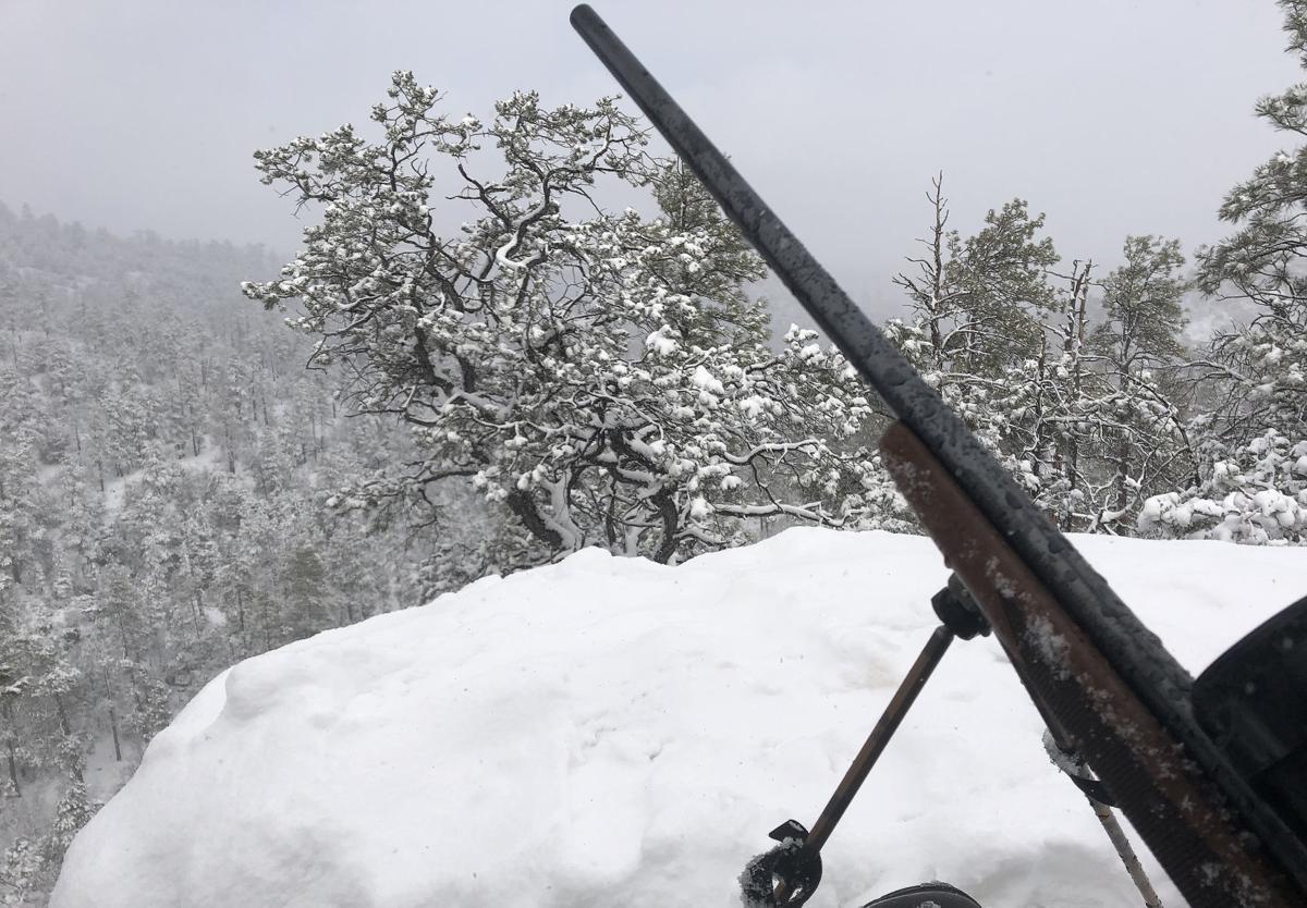 Snowy elk hunt