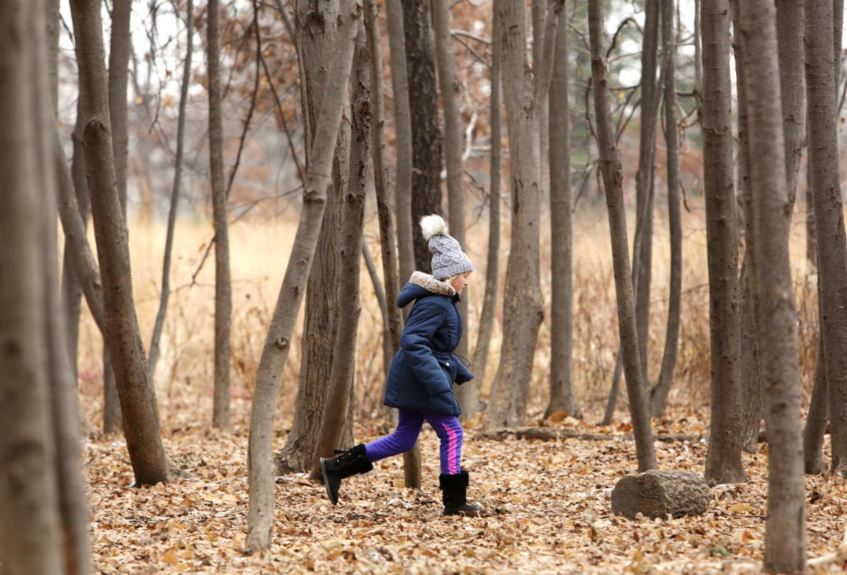 Outdoors at Aldo Leopold Nature Center