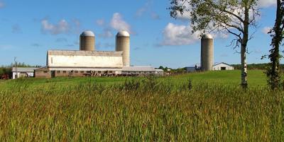 Farm with barn and silos (copy)