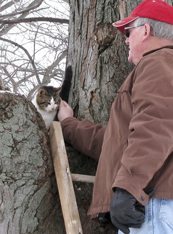 Ron Venden and cat in tree