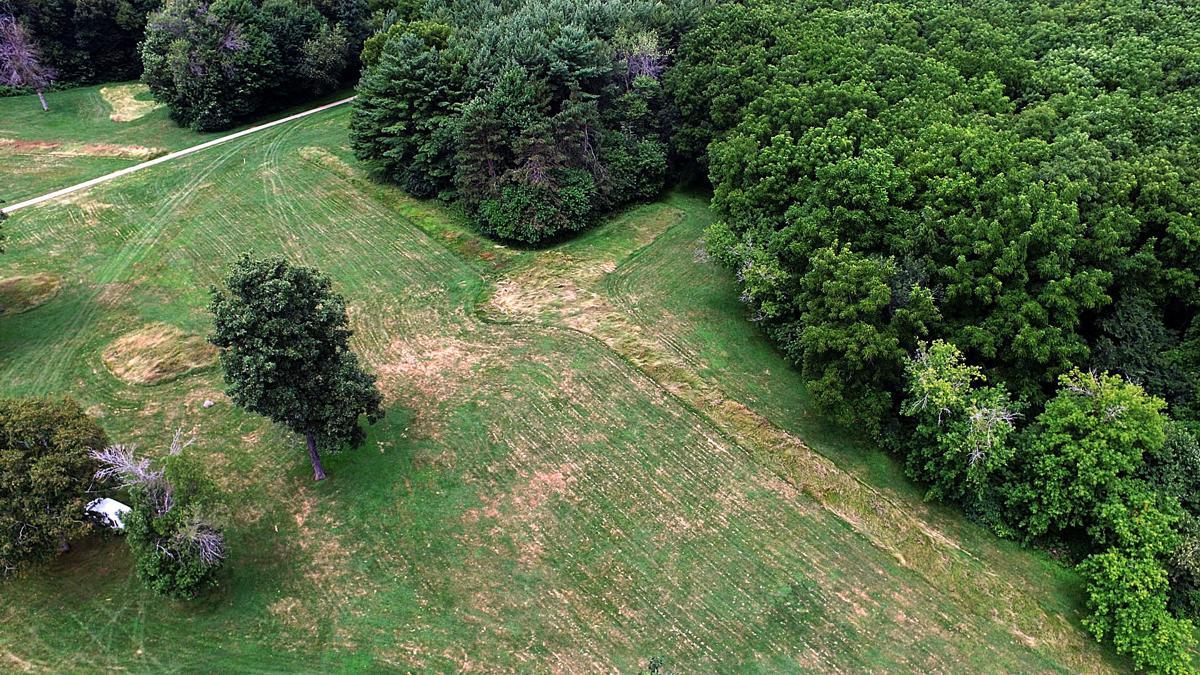 Mendota mounds