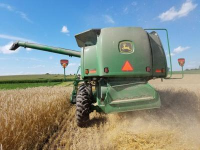 Margaret Krome: Wisconsin should encourage farmers to grow small grains