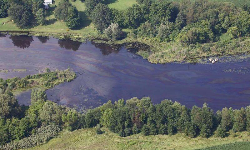 oily river
