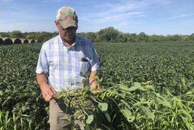 Mankato Free Press: Trump administration hurting crop prices, farmer income