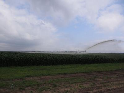 Center pivot manure irrigation